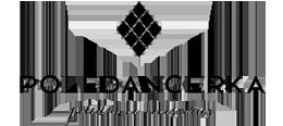 Partner Poledancerka